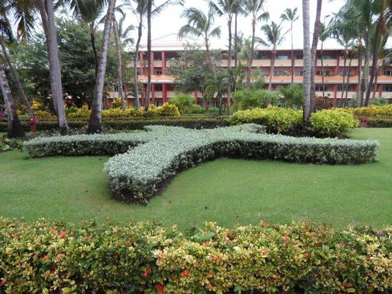 Iberostar Dominicana Hotel: Belle végétation
