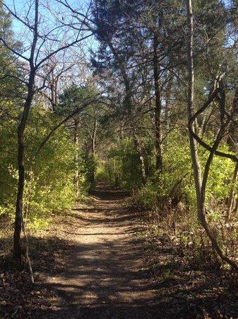 Raven Run Nature Sanctuary : Scenery