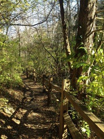 Raven Run Nature Sanctuary : Gorgeous fall scenery
