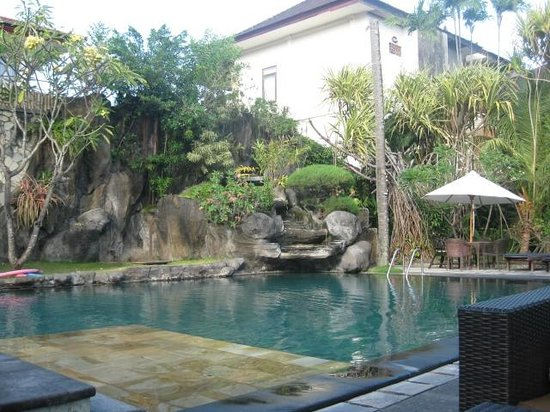 Adi Dharma Hotel : Cottages pool