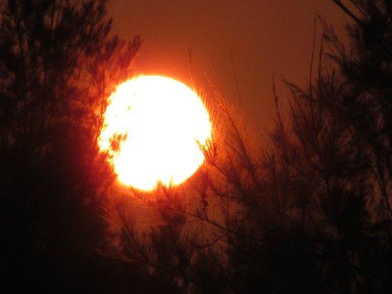 Tajpur Palm Village Resort: sunset from bacony