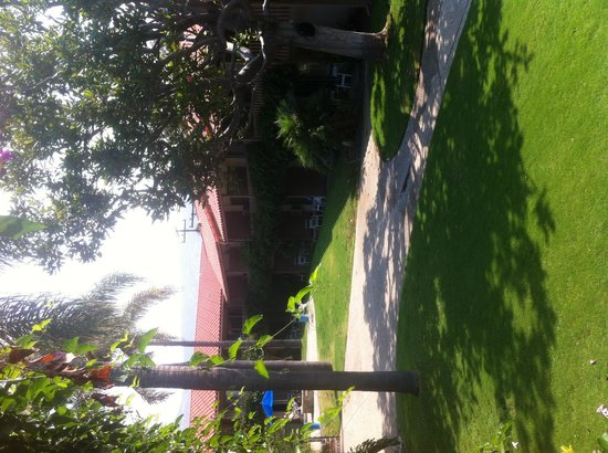 BEST WESTERN PLUS Pepper Tree Inn : Garden view