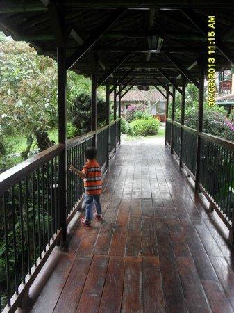 Hotel Campestre El Eden Country Inn : DE PASEITO  por sus  caminos