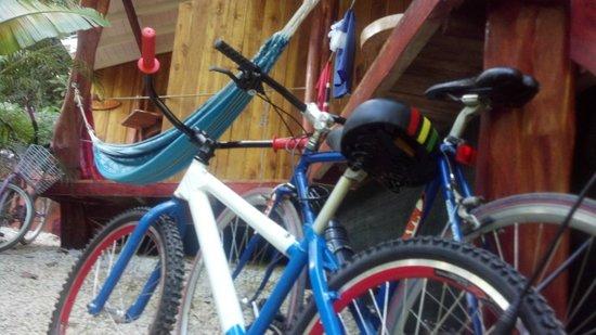 El Pequeno Gecko Verde : Front porch/bikes/hammock