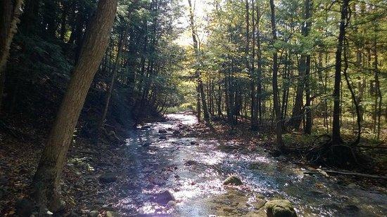 Nice Scenery Picture Of Terra Cotta Conservation Area Halton - 6 scenic hikes in halton hills
