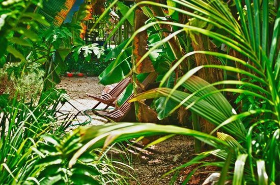 Garden El Zapote Tulum