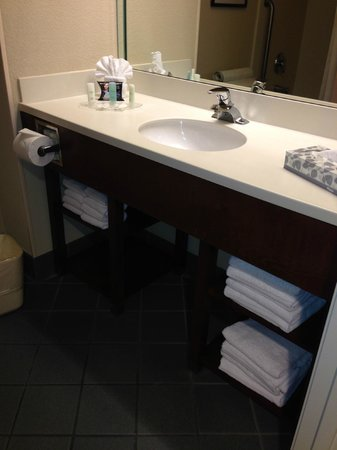 Comfort Suites Miami / Kendall : bathroom