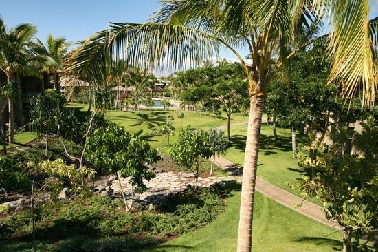 Fairways at Mauna Lani: View