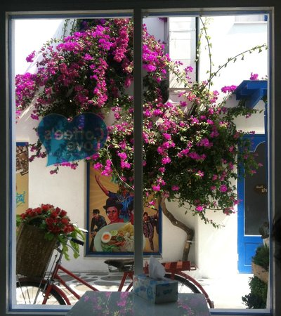 Santorini Park: From inside the coffee shop
