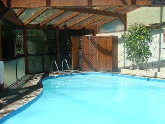 Cabanas Arique: pileta climatizada
