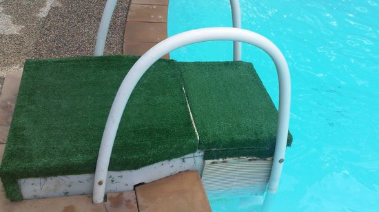 Bay View Resort : pool area