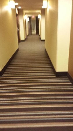 Hilton Garden Inn West Palm Beach Airport: WALKWAY
