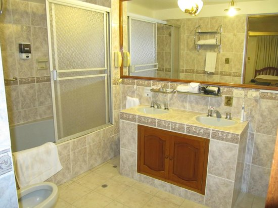 BEST WESTERN Los Andes De America: The elegant bathroom