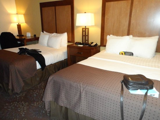 BEST WESTERN PLUS El Paso Airport Hotel & Conference Center: The beds.