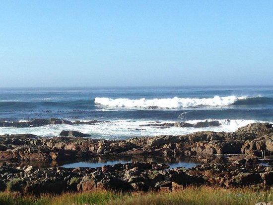 138 Marine Beachfront Guesthouse: Küste vor dem Guesthouse