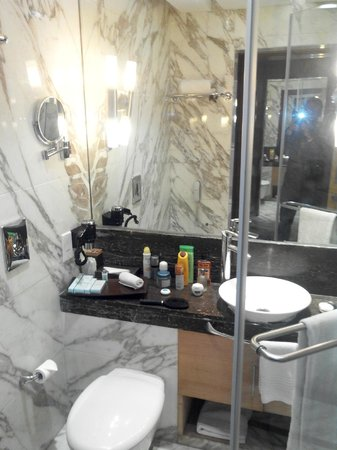 Radisson Blu Marina Connaught Place: Small but clean bathroom