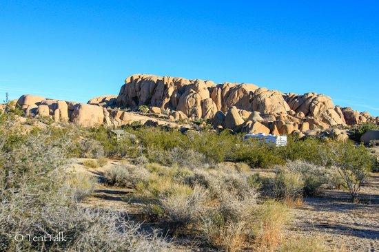 Jumbo Rocks Campground: Jumbo Rocks Campground