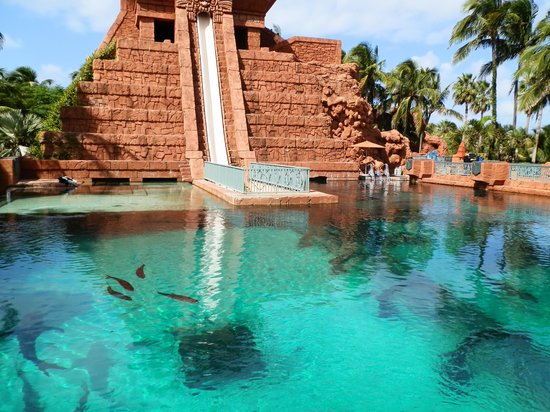 Mayan temple slide - underwater - Picture of Aquaventure ...