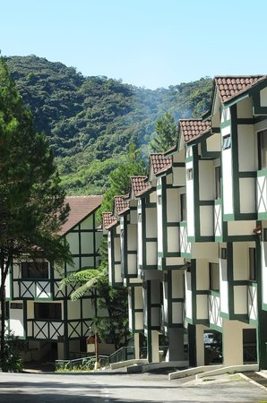 Natasya Resort Cameron Highlands