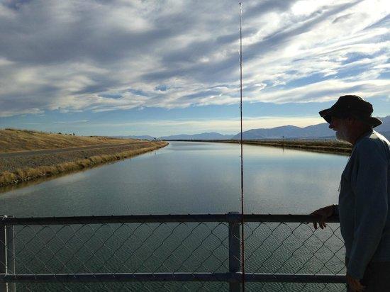Mt. Cook Alpine Salmon Shop : River of salmon farm