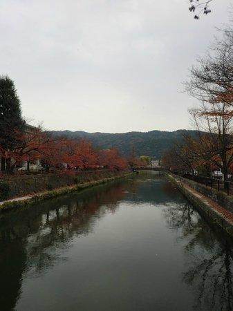Kyoto Municipal Museum of Art: 東山を遠謀、左手が美術館