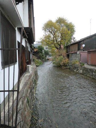 Kyoto Municipal Museum of Art: 祇園白川の流れ、この奥のほうに浮き寝鳥がいた