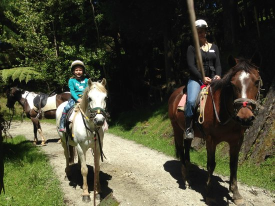 Horse Riding Warkworth : On the trail