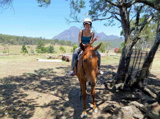 Lillydale Farmstay: My first horse riding experience