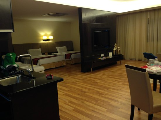 Hotel Grand Paragon : 1br apt view