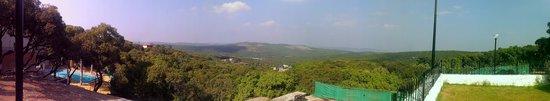 Hotel Gautam: View from Hotel Garden