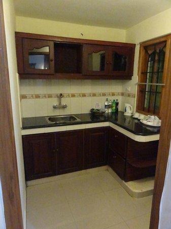 Woodpecker Resort: Basic kitchen