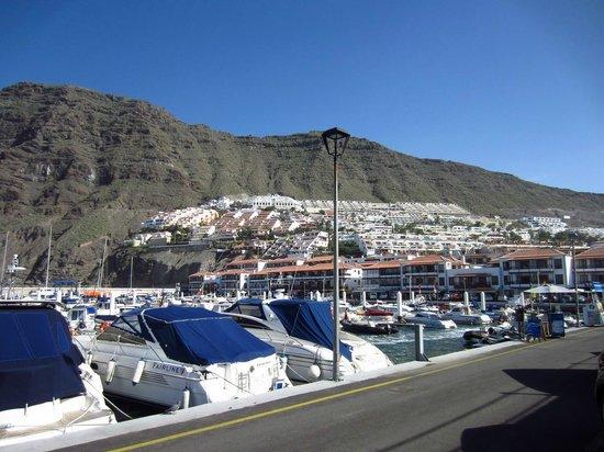 Apartamentos Poblado Marinero: Apartments and marina from seafront