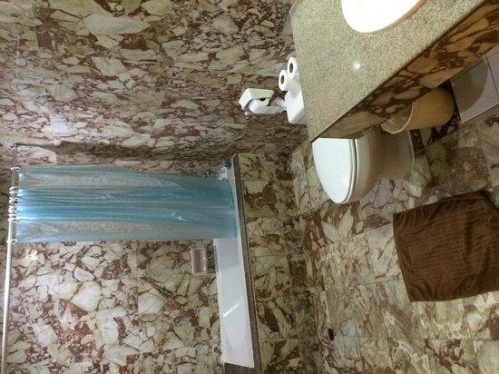 Mike Beach Resort: スイート2ベットルームタイプの浴室です。