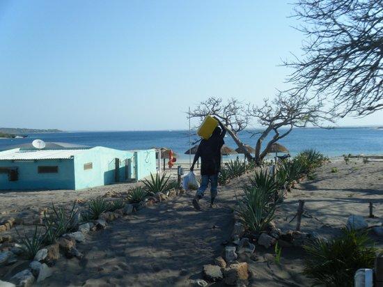 O Barqueiro Beach Bar: Path down to the Beach Bar