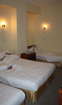 Historia Hotel: Vue chambre