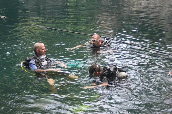 Turtle Dive Center: Grotte DUDU
