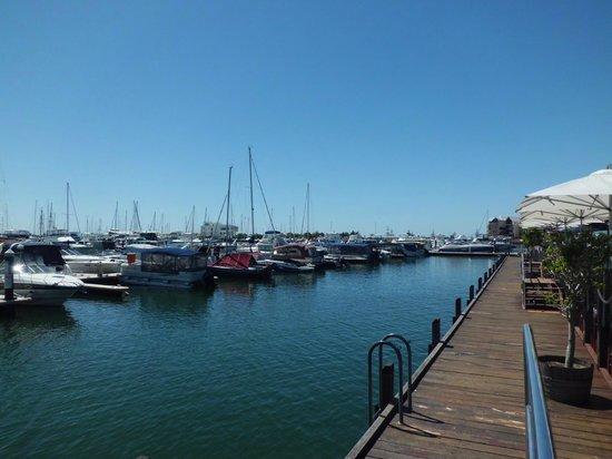 Sharky's Restaurant Bar and Grill: Mandurah Ocean Marina