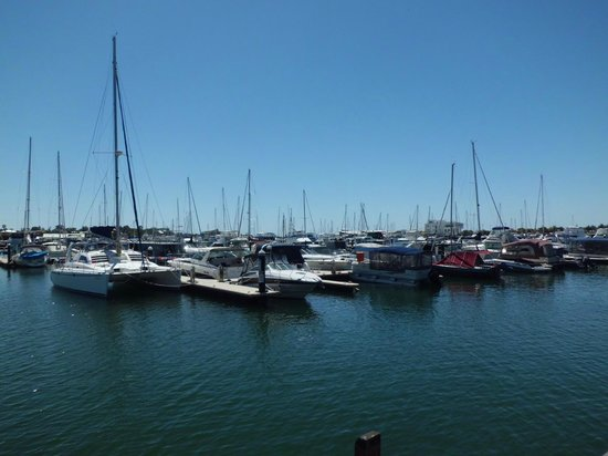 Sharky's Restaurant Bar and Grill: Mandurah Ocean Marina