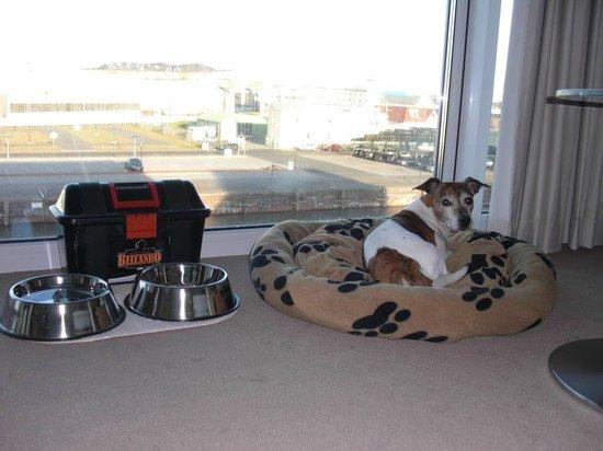 Best Western Plus Hotel Bremerhaven: Hundeservice mit Körbchen, Näpfen und Leckerlies