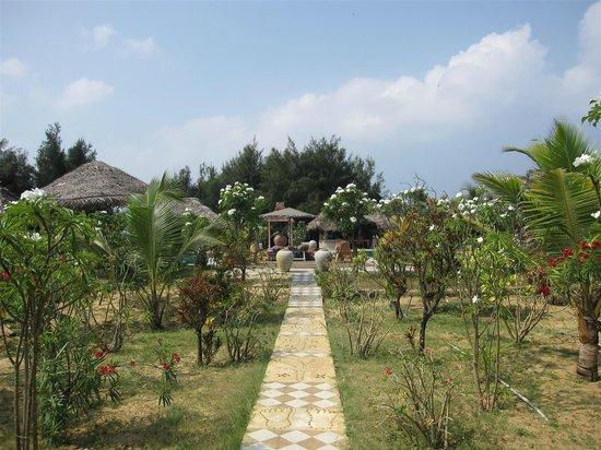 Udekki: The path to the pool, through the garden