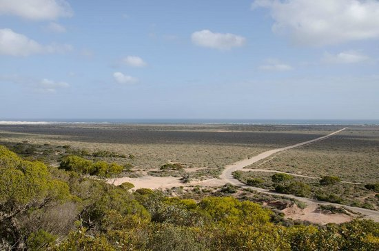 Eucla Motor Hotel: View from our Powered site