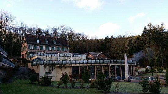 Les Violettes Hotel & Spa Alsace, BW PREMIER Collection: hotel restaurant