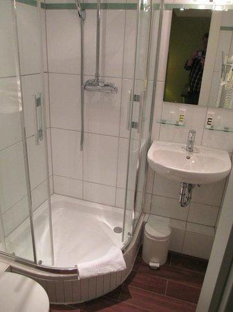 Mercure Strasbourg Centre Petite France : The tiny bathroom!