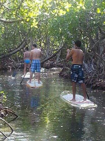 Aleli Tours - Day Tours: Leisurely paddleboarding!