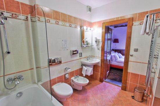 Hotel U Pava : Bathroom