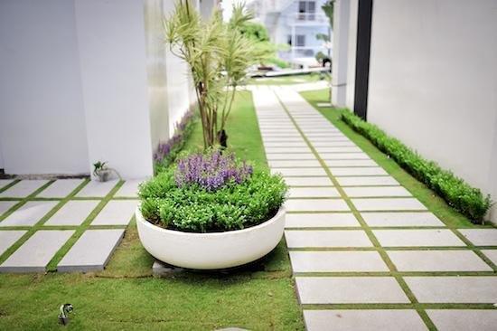 Bai Shuei Mu Inn: 庭園