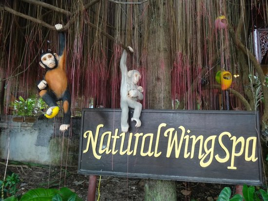 Natural Wing Health Spa & Resort: front of the resort