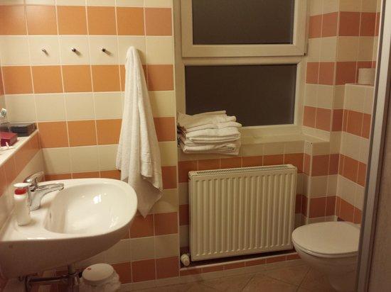 JUFA Hotel Salzburg City: BAGNO PULITO