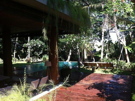RedDoor Bali : vue piscine du jardin