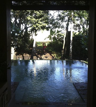RedDoor Bali : la piscine